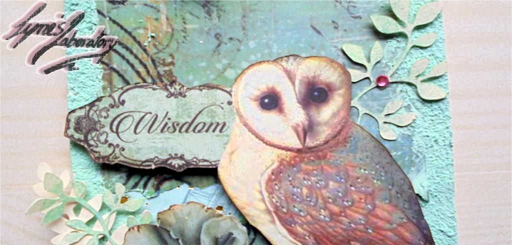 Reto Desvanero 29.- Wisdom